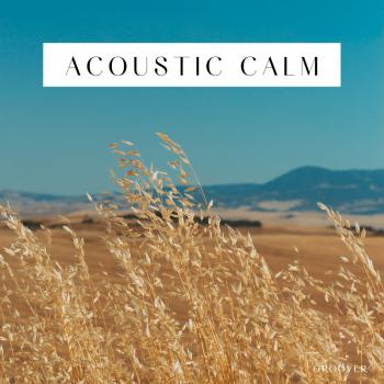 playlist spotify acoustic calm musique acoustique